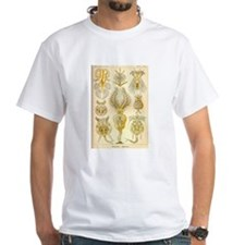 haeckel_rotifers.jpg T-Shirt