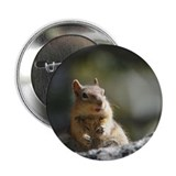 Golden-Mantled Ground Squirrel Button