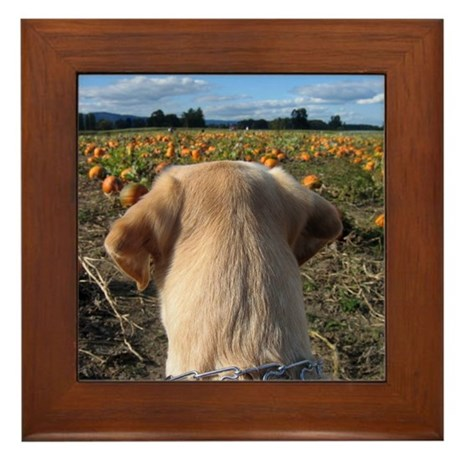 Nov Lab of the Month Framed Tile