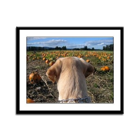 Nov Lab of the Month Framed Panel Print