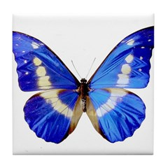 Blue Butterfly Tile Coaster