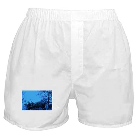 Blue Garden Boxer Shorts