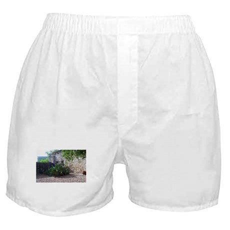 Prickly Pear Cactus Boxer Shorts
