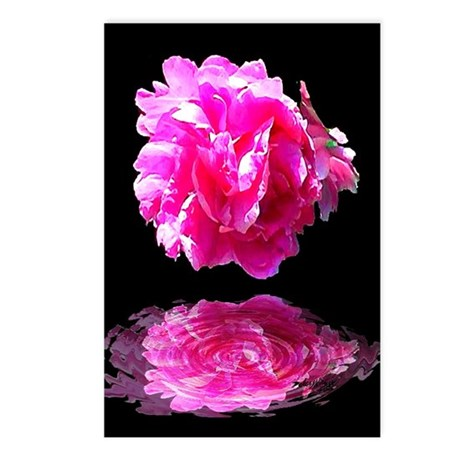 Peony Reflections Postcards (Package of 8)