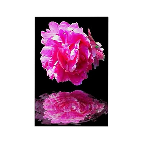 Peony Reflections Rectangle Magnet