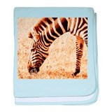 Black and White African Grazing Zebra baby blanket
