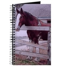 Clydesdale #1 - Journal