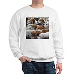 The Foxed Sweatshirt