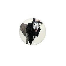 FancyPants Mini Button (100 pack)