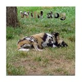 wild dog Tile Coaster
