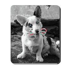 Corgi Candy Cane Mousepad