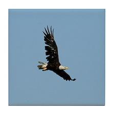 Ragged Eagle Tile Coaster
