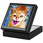 Krazy Kitten Keepsake Box