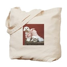 Maltese Dogs Photography Tote Bag