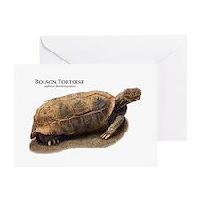 Bolson Tortoise Greeting Card