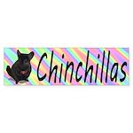 Chinchillas Sticker (Bumper)