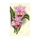 Orchid Antique Botanical Prin Sticker (Rectangular