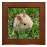 Baby Rabbit in the Grass Framed Tile