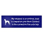 My WHIPPET is so Evolved... Bumper Sticker