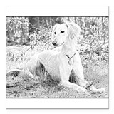 "Saluki Pencil Portrait Square Car Magnet 3"" x 3"""