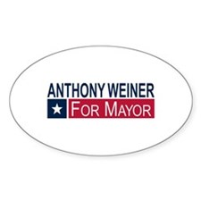 Elect Anthony Weiner Decal