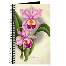 Orchid Antique Botanical Prin Journal