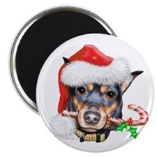 "Min Pin Christmas 2.25"" Magnet (10 pack)"