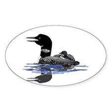 Calling Loon Decal
