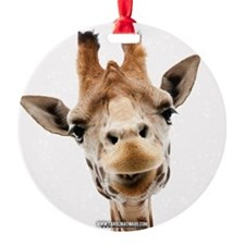 Hangover Movie Part 3 Giraffe Ornament