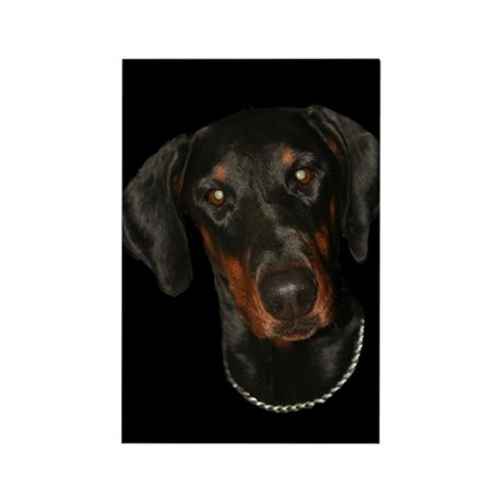 Doberman Rectangle Magnet