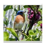 Bluebird in my Lilacs Tile Coaster