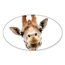 Hangover Movie Part 3 Giraffe Decal