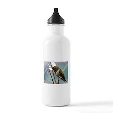 Angry Hummingbird Water Bottle
