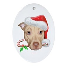 Zoey Christmas Oval Ornament