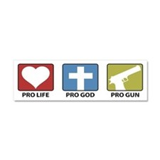 Cute Anti abortion Car Magnet 10 x 3