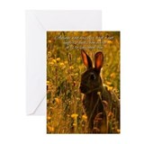 Pet Sympathy Card - Loss Of Pet Rabbit (Pk of 20)