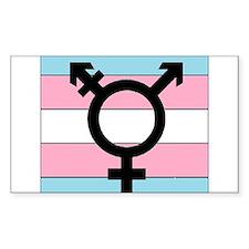Transgender Equality Decal