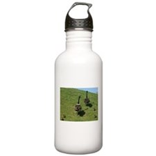 Geese Family with babies Water Bottle