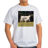cow and calf Ash Grey T-Shirt