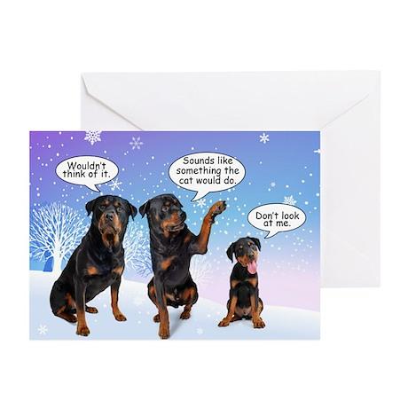 Christmas Card Layout Ideas MEMEs