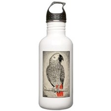 African Grey in Pencil Water Bottle