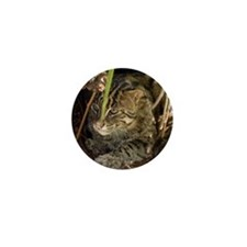Fishing Cat Mini Button (100 pack)