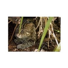 Fishing Cat Rectangle Magnet (100 pack)