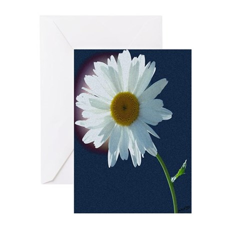 Daisy Greeting Cards (Pk of 10)