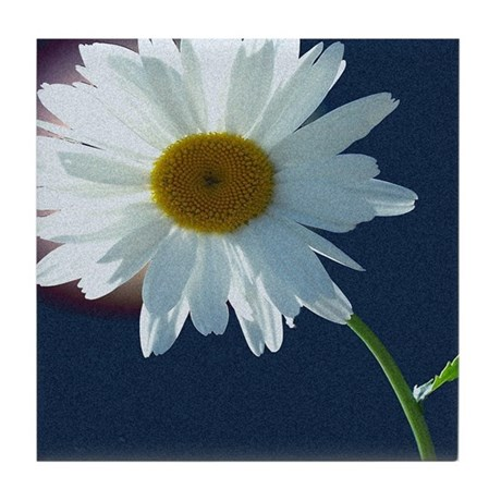 Daisy Tile Coaster