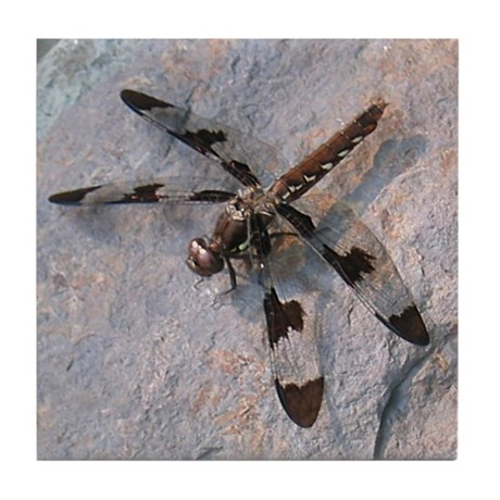 Dragonfly Tile Coaster