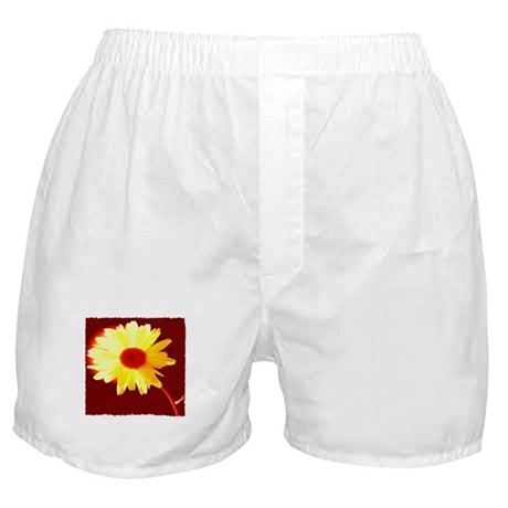 Hot Daisy Boxer Shorts