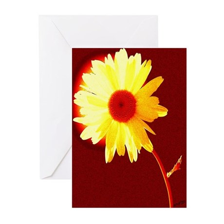 Hot Daisy Greeting Cards (Pk of 10)