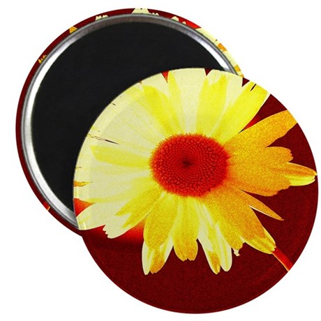 "Hot Daisy 2.25"" Magnet (100 pack)"