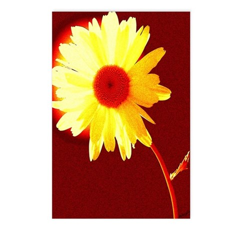 Hot Daisy Postcards (Package of 8)
